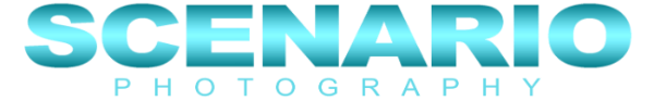 Scenario Photography Logo